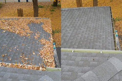 gutter roof cleaning